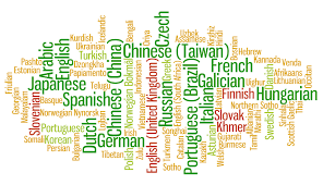 Tech4Law now available in 100 languages