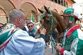 catholic race horse
